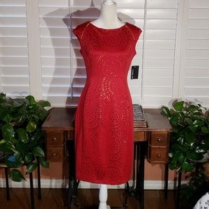 Ravishing  En Focus Studio dress. Size 8.
